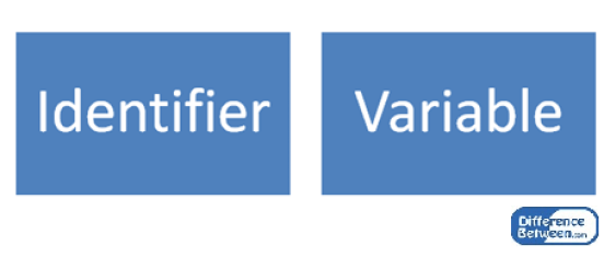 Difference Between Identifier and Variable