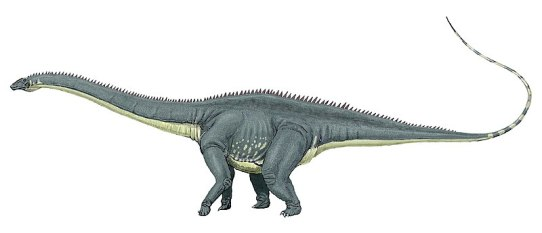 Difference Between Brontosaurus and Diplodocus