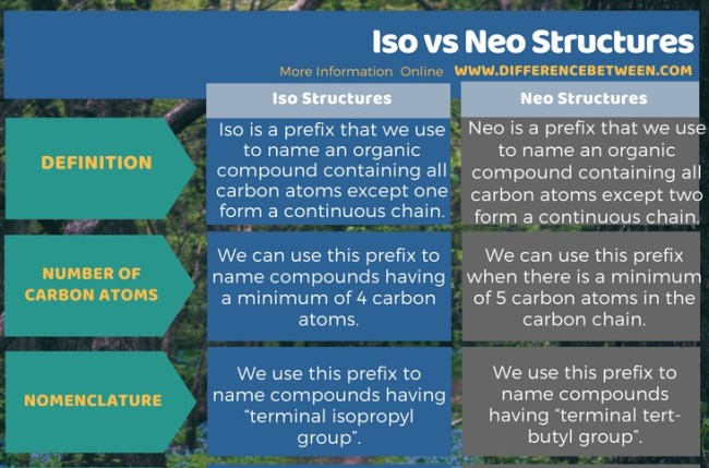Difference Between Iso and Neo Structures in Tabular Form
