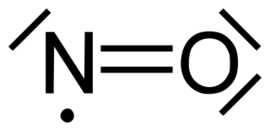 Key Difference Between L Arginine and Nitric Oxide