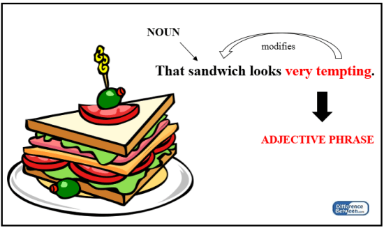 Key Difference Between Noun Phrase and Adjective Phrase