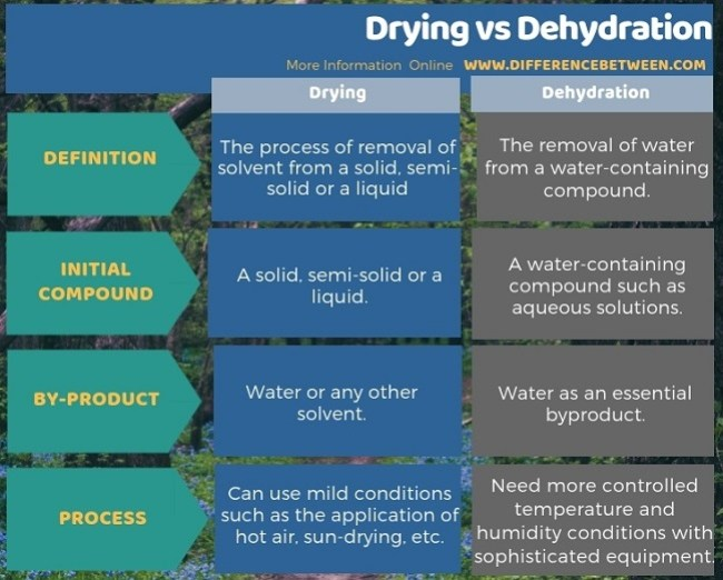 Difference Between Drying and Dehydration in Tabular Form