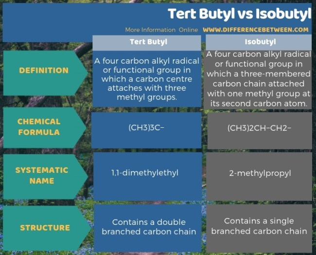 Difference Between Tert Butyl and Isobutyl in Tabular Form