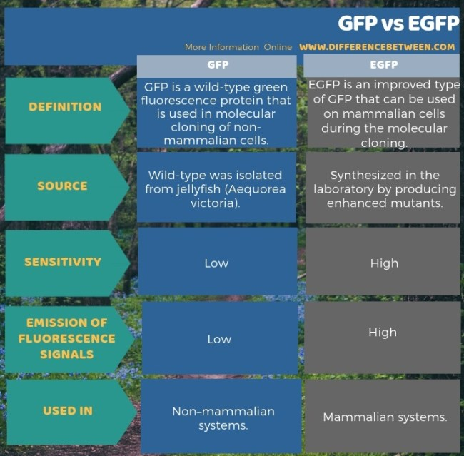 Difference Between GFP and EGFP in Tabular Form