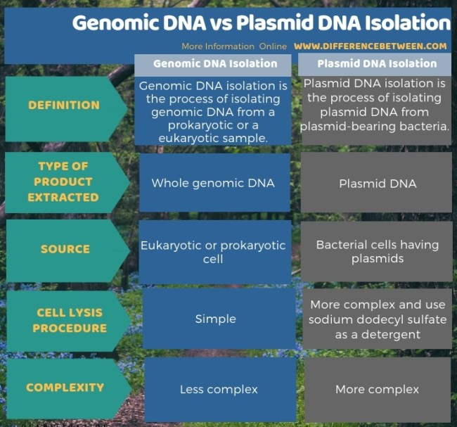 Difference Between Genomic DNA and Plasmid DNA Isolation in Tabular Form