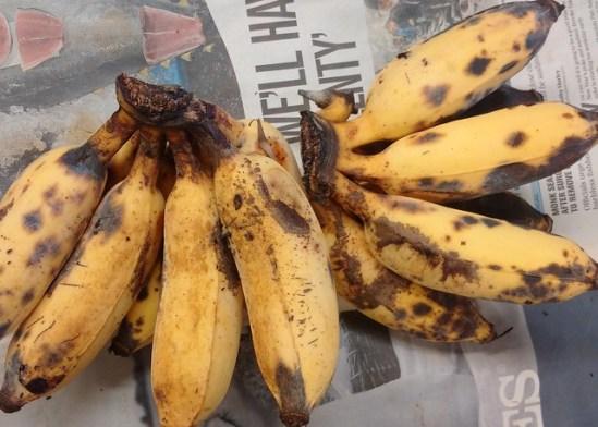 Key Difference - Anthracnose vs Cercospora Leaf Spot