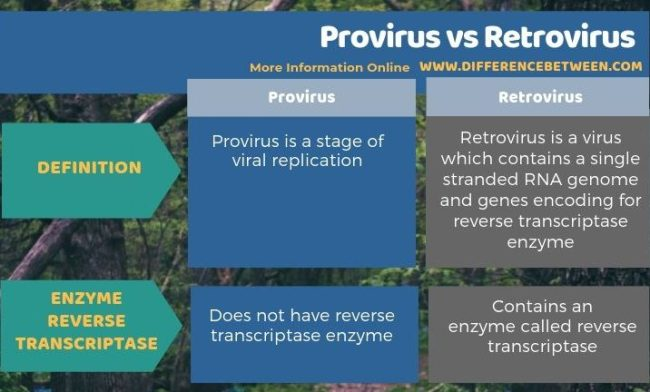 Difference Between Provirus and Retrovirus in Tabular Form