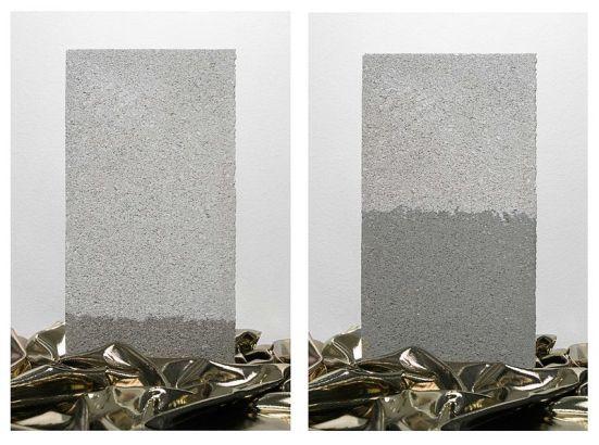 Capillary Action vs Transpiration Pull