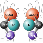 Difference Between Epimerization and Racemization