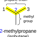 Difference Between Straight and Branched Chain Alkanes