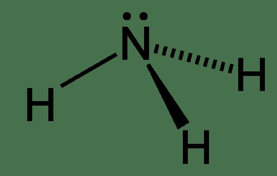 Ammonotelic vs Ureotelic vs Uricotelic
