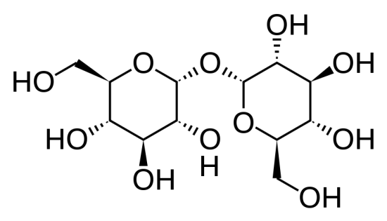 Difference Between Trehalose and Maltose