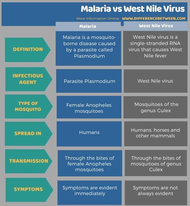 Difference Between Malaria and West Nile Virus in Tabular Form