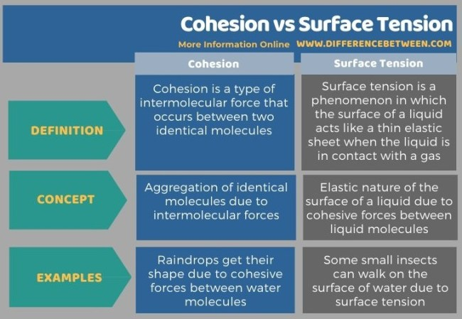 Difference Between Cohesion and Surface Tension in Tabular Form