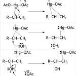 Difference Between Concerted and Stepwise Reactions