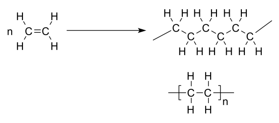 Difference Between Dimerization and Polymerization