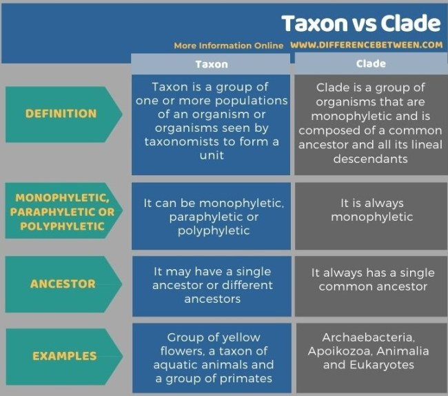 Difference Between Taxon and Clade in Tabular Form