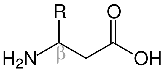 Alpha and Beta Amino Acids Difference