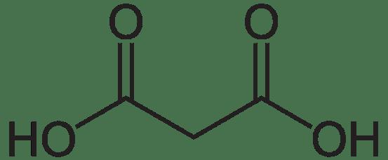 Malonic Acid vs Succinic Acid
