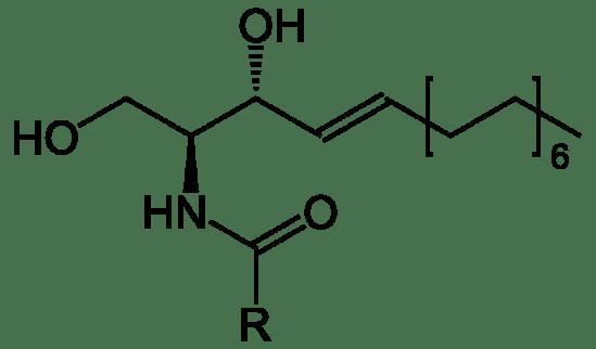 Ceramides vs Peptides in Tabular Form