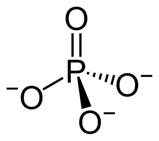 Orthophosphate and Polyphosphate - Side by Side Comparison