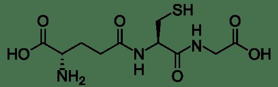 l Glutathione vs s Acetyl Glutathione