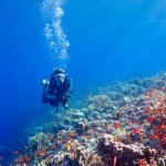 Une femme en plongée en Egypte tente d'améliorer sa flottabilité