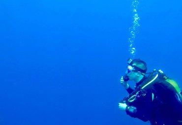 Plongée Sous-Marine : Sommes-Nous TOUS des Cobayes ?