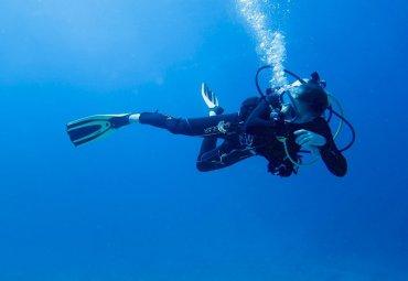 Mauvais plongeurs : les signes qui les trahissent (et pourquoi je les aime 😍)