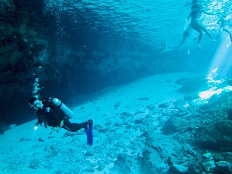 Plongeur à la sortie du cénote de Dos Ojos