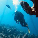 Un plongeur évolue dans une mer claire avec un poisson