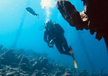 Votre profil de plongeur selon l'astrologie