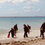 Des plongeurs entrent dans la mer