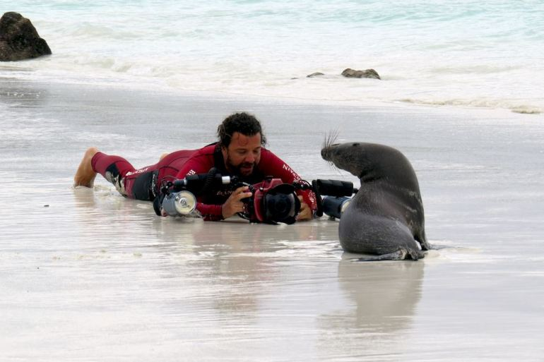 Vincent prend une photo d'un phoque sur une plage