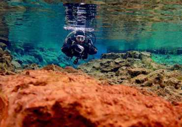 12 conseils pour débuter la photo sous-marine