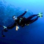Un plongeur sous l'eau avec son appareil photo