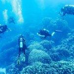 Apprendre au travers des réseaux sociaux pour mieux mettre en pratique dans notre milieu marin