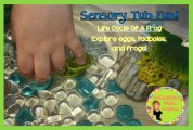 Life cycle of a frog with sensory table