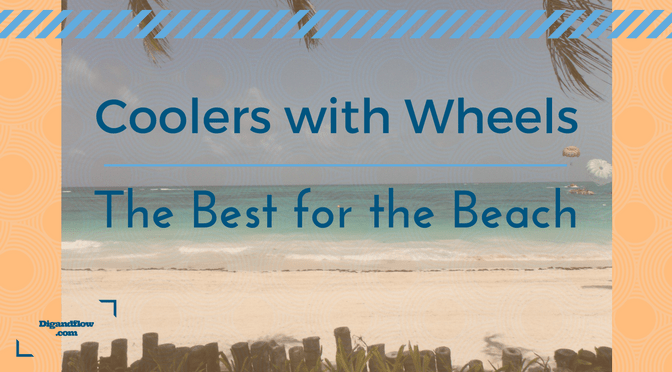 Best Beach Coolers with Wheels