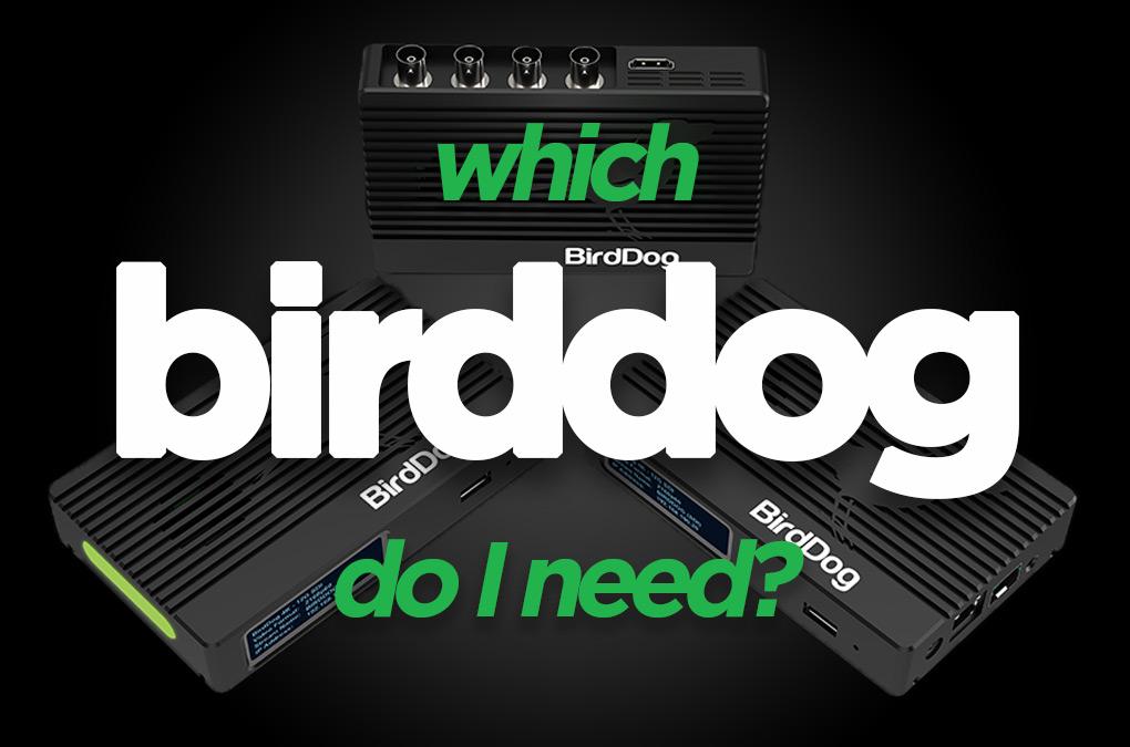BirdDog NDI HDMI to NDI