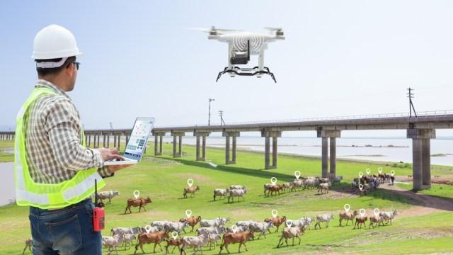 Scottish farmers digital skills