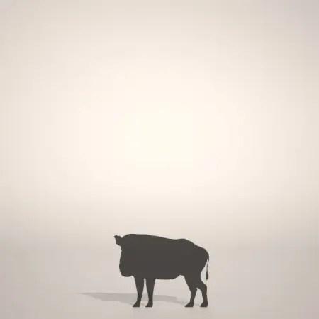 formZ 3D silhouette 動物 animal イノシシのシルエット いのしし 猪 亥 boar
