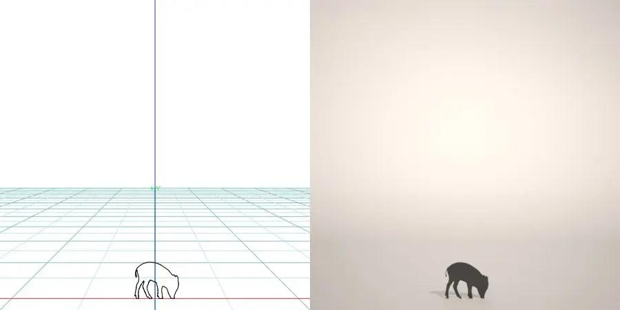 formZ 3D silhouette 動物 animal うり坊のシルエット いのしし 猪 亥 boar