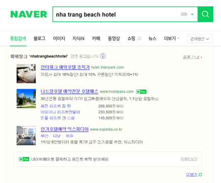 screenshot of a search engine result in naver