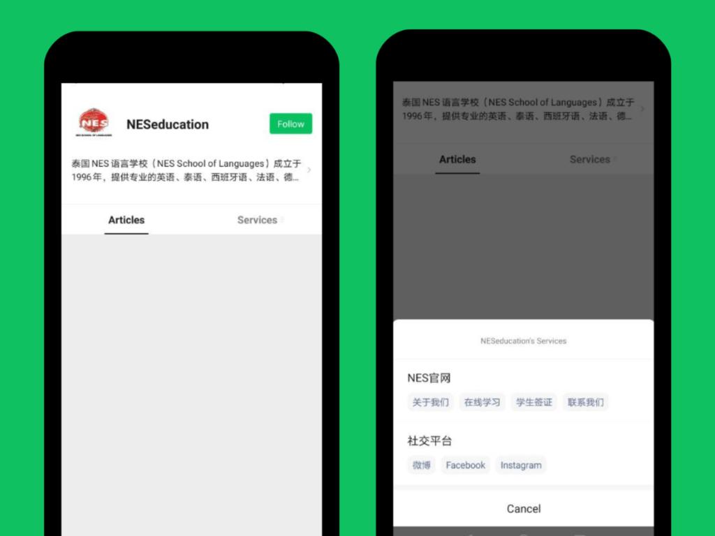 Ảnh chụp màn hình tài khoản WeChat chính thức đã được xác minh của NESEducation