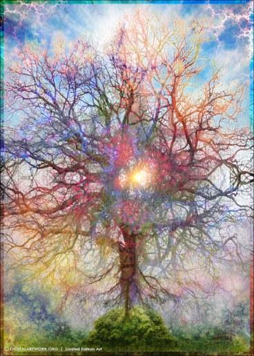 Forgotten-Tree