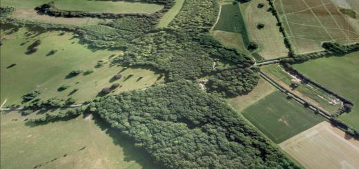 Bevisbury Hillfort, Hampshire