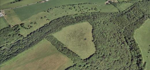 Bury Wood Camp Hillfort, Wiltshire
