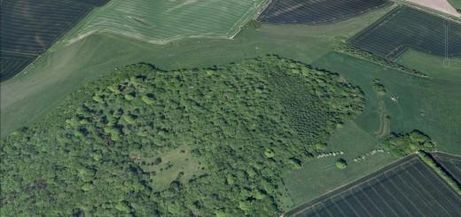 Ebsbury or Grovely Earthworks, Wiltshire