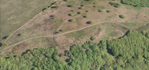 Grabbist Hillfort, Grabbist Hill, Dunster, Somerset